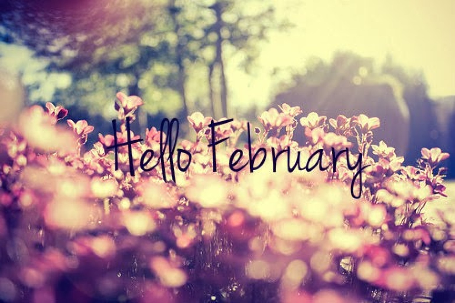 new month blessings february priestess antranette doe